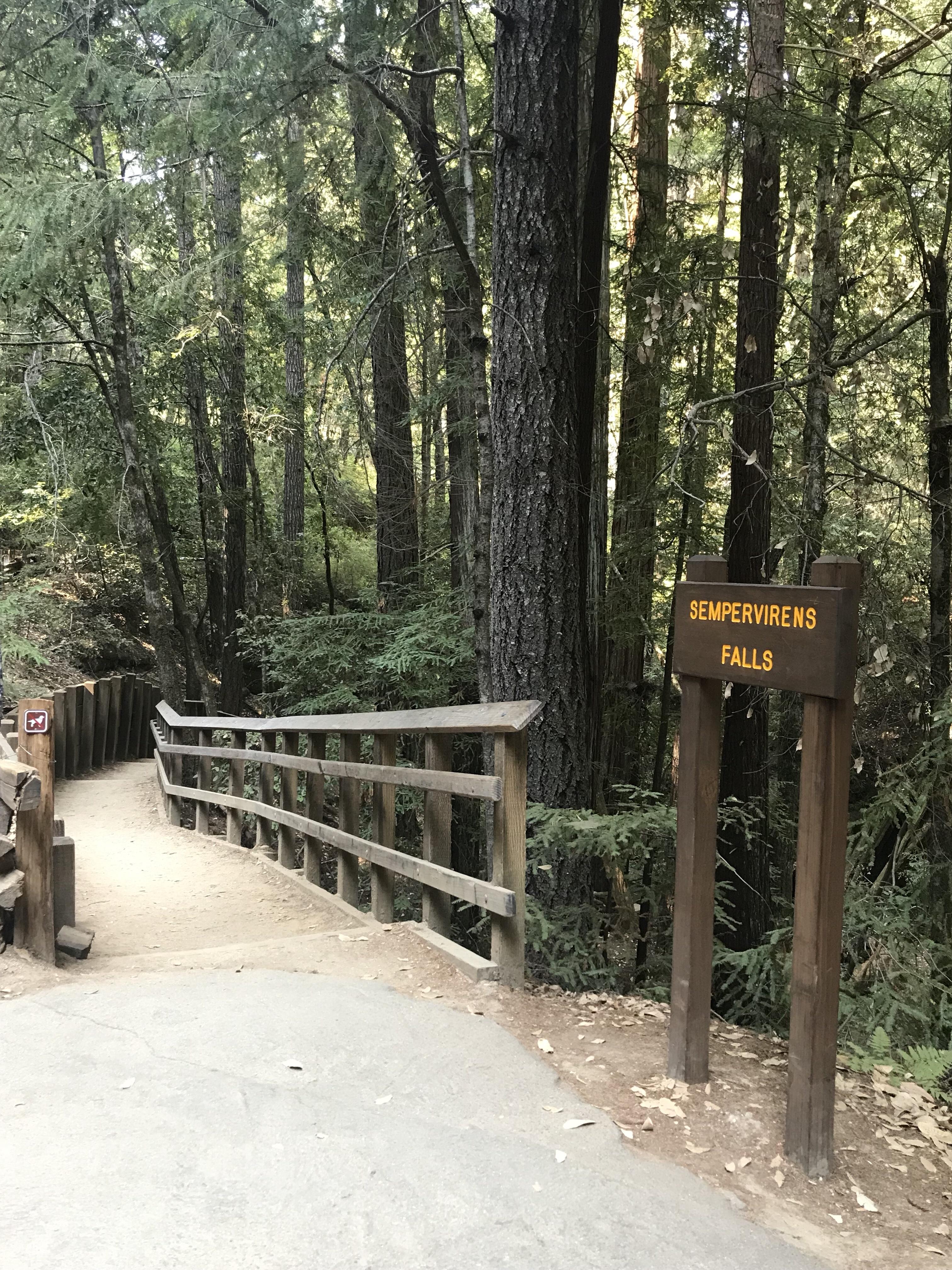 Sempervirens Falls sign at Big Basin Park California