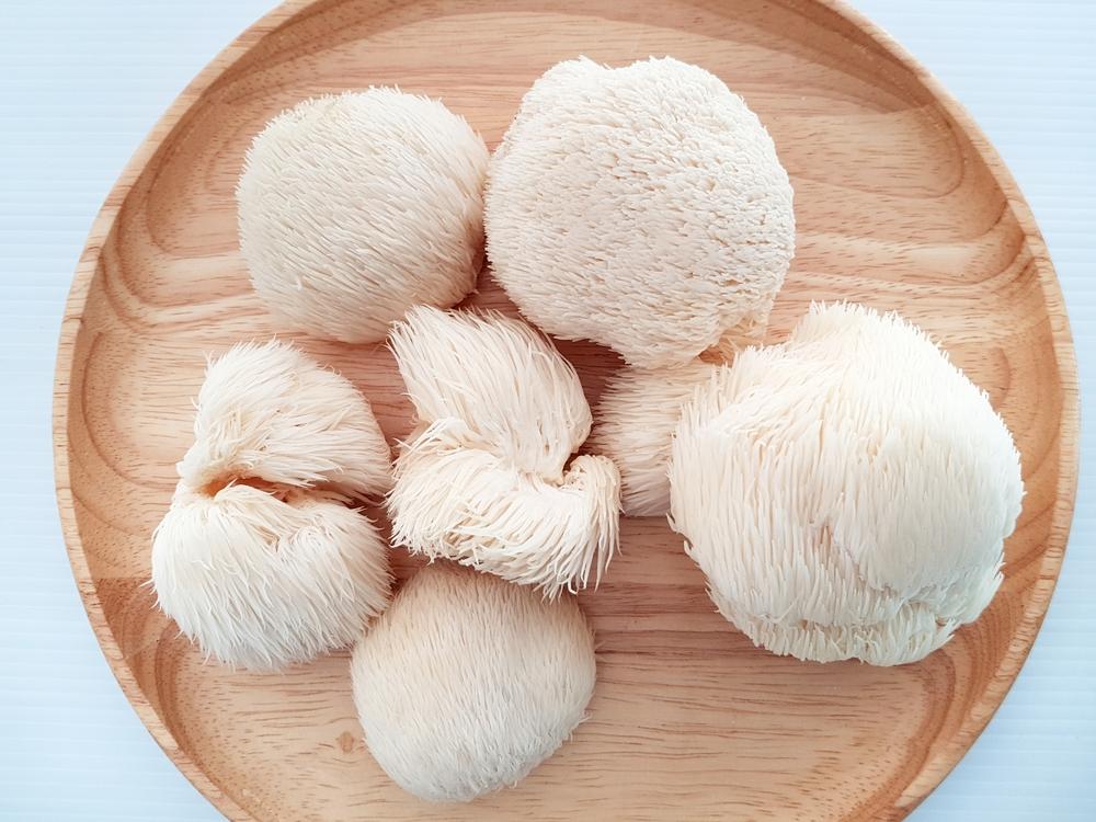 lions_mane_mushroom-benefits-absolutely_adell