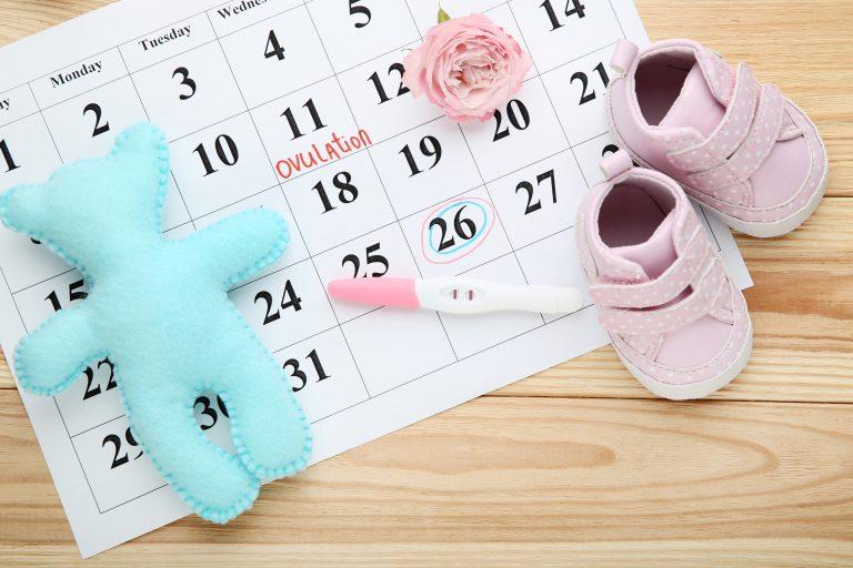 cvs ovulation pregnancy calendar LH Absolutely Adell
